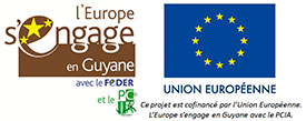 The Malakit project is co-financed by the European Union. Europe is going to Guyana with the PCIA.
